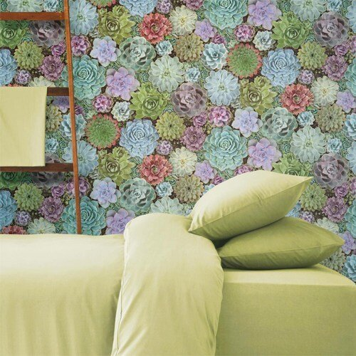 RMK11249RL york wallcovering roommates succulents peel and stick wallpaper room setting