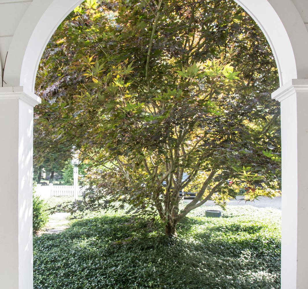 John de Lellis Gardens 117.jpg