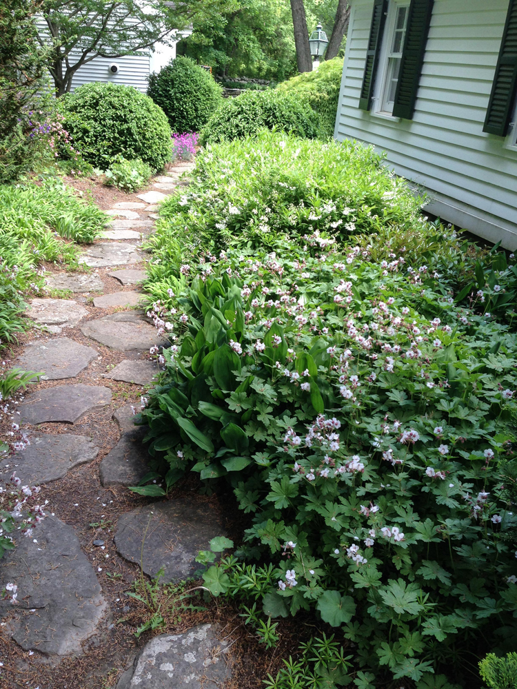 John de Lellis Gardens 123.jpg