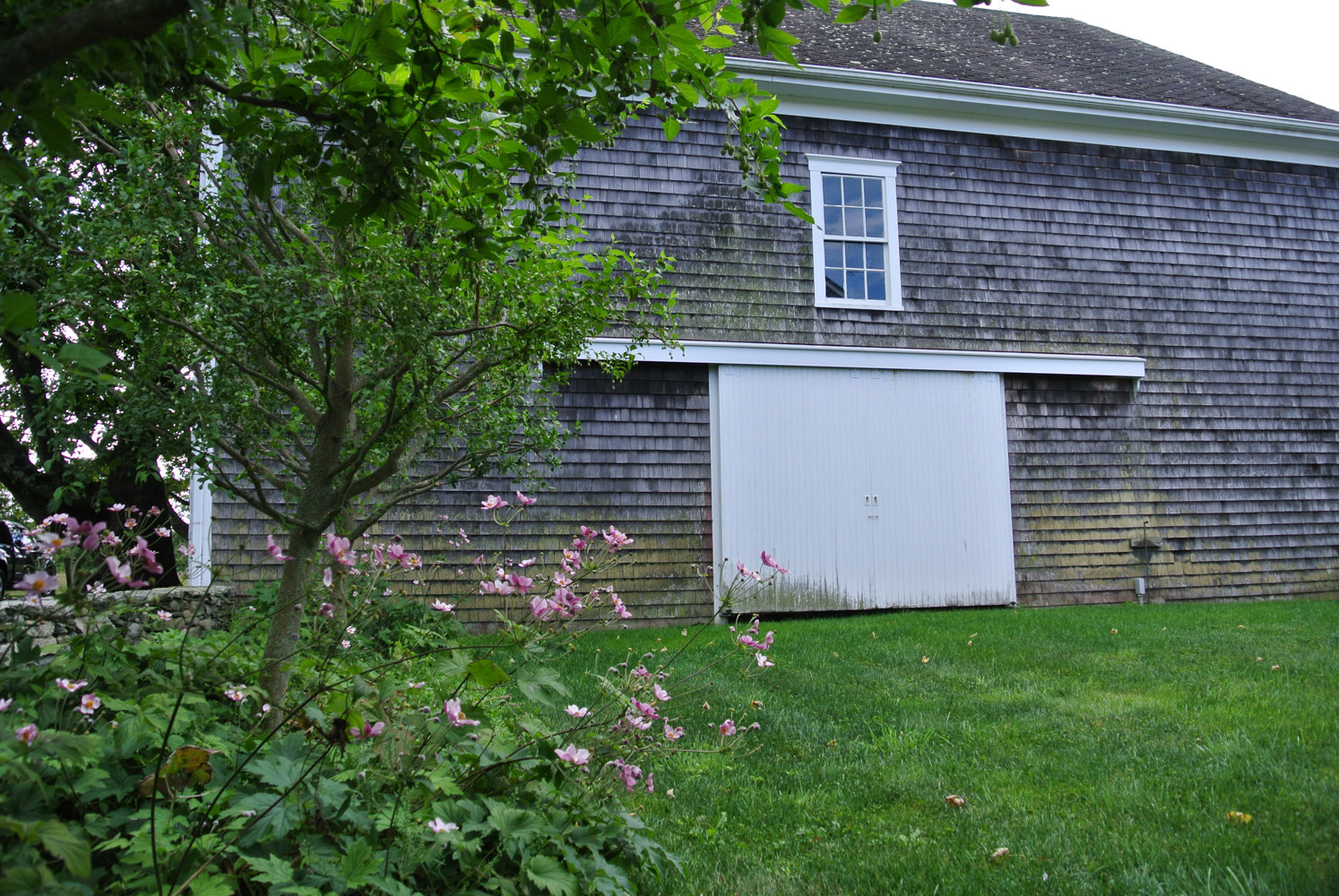 John de Lellis Gardens 109.jpg
