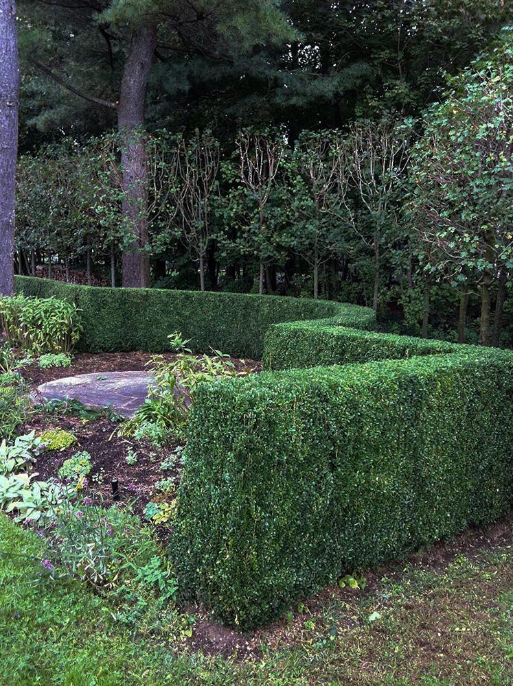John de Lellis Gardens 818.jpg
