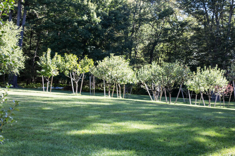 John de Lellis Gardens 41.jpg
