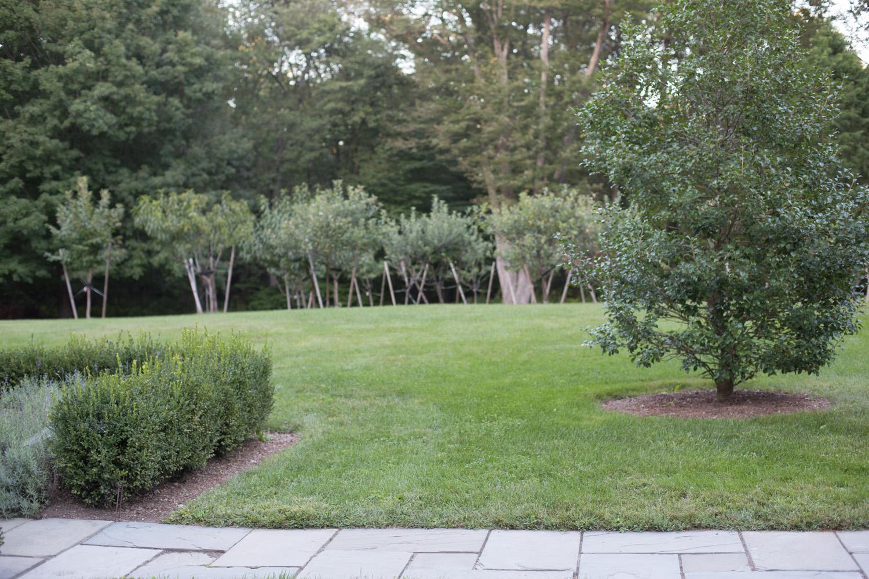 John de Lellis Gardens 48.jpg