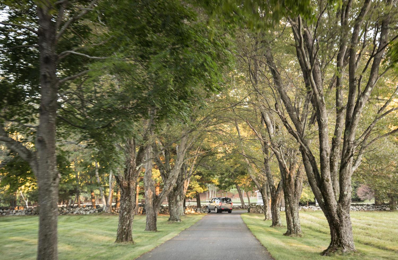 John de Lellis Gardens 1115.jpg