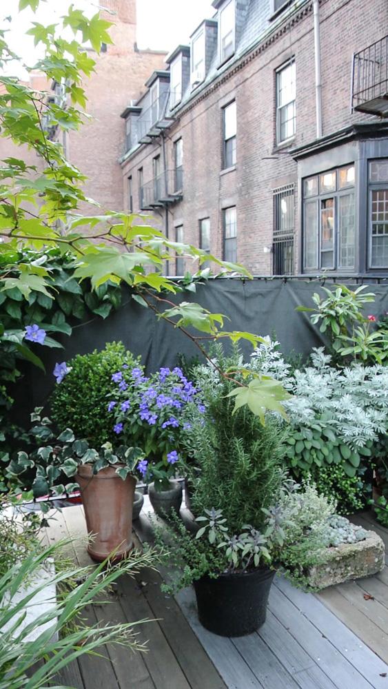 John de Lellis Gardens 26.jpg