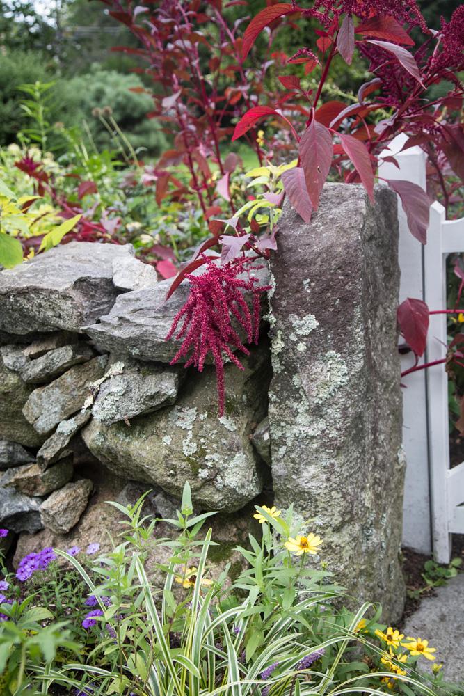 John de Lellis Gardens 914.jpg