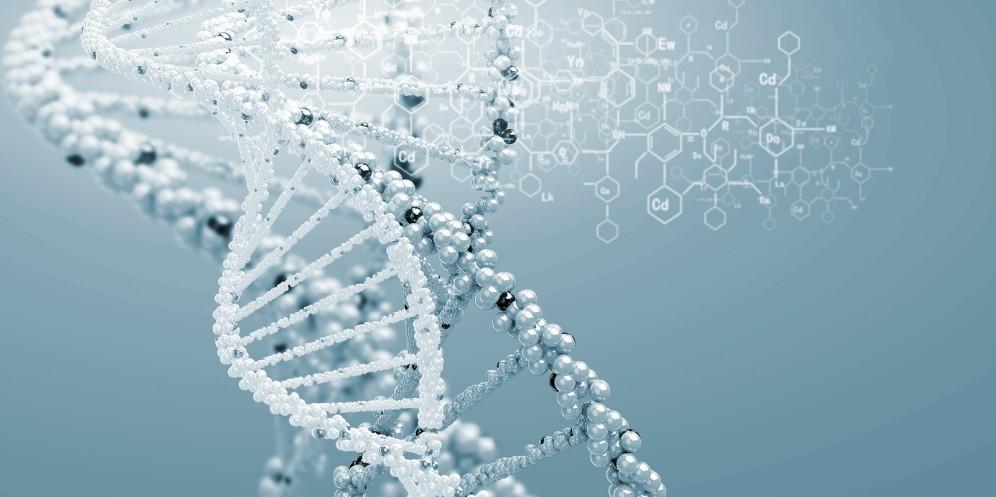 Genetic Testing 2.jpg