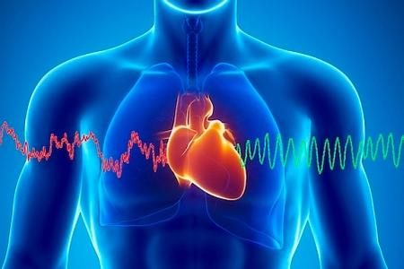 Heart Sound.jpg