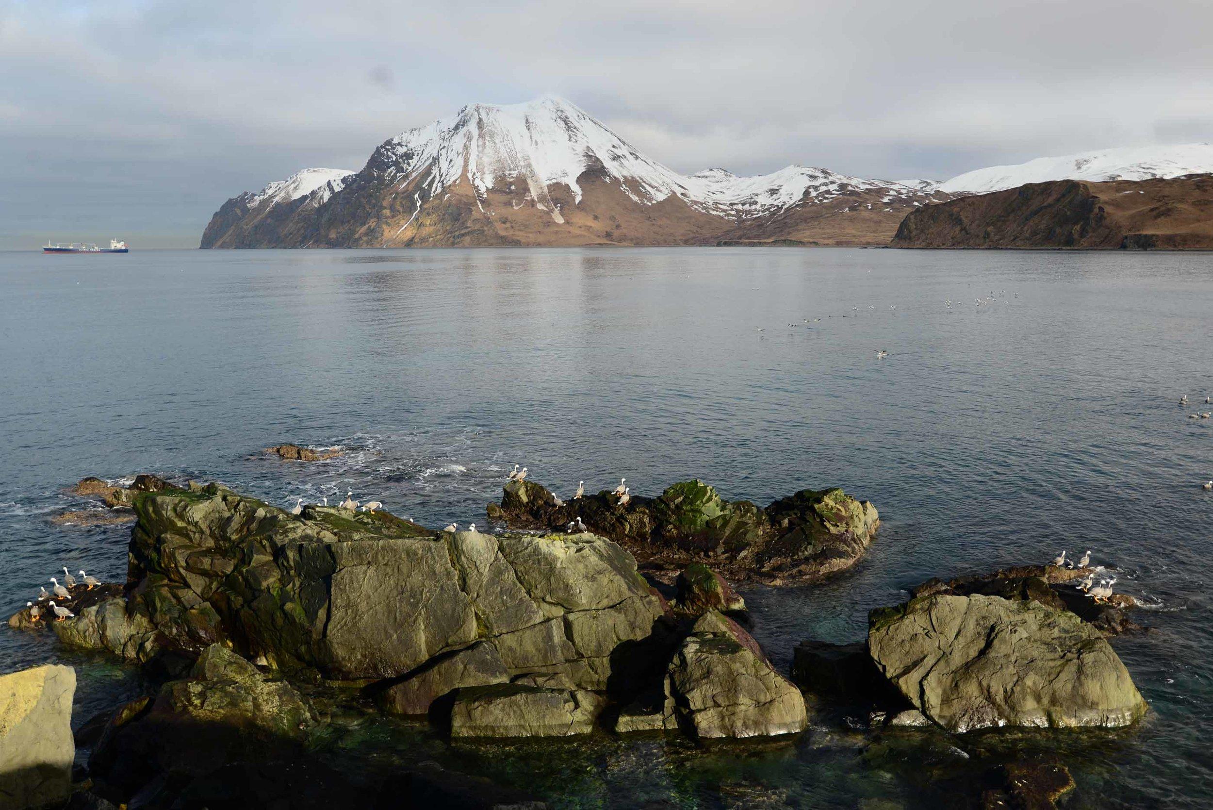 Unalaska033.jpg