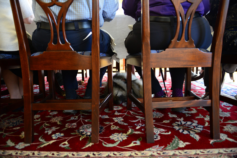 Waverly, certified crisis response canine and a recipient of the 2018 First Lady's Volunteer of the Year Award, snoozes beneath the table during the awards banquet at the Governor's Mansion. May 24, 2019.