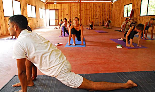 rishikesh yoga.jpg