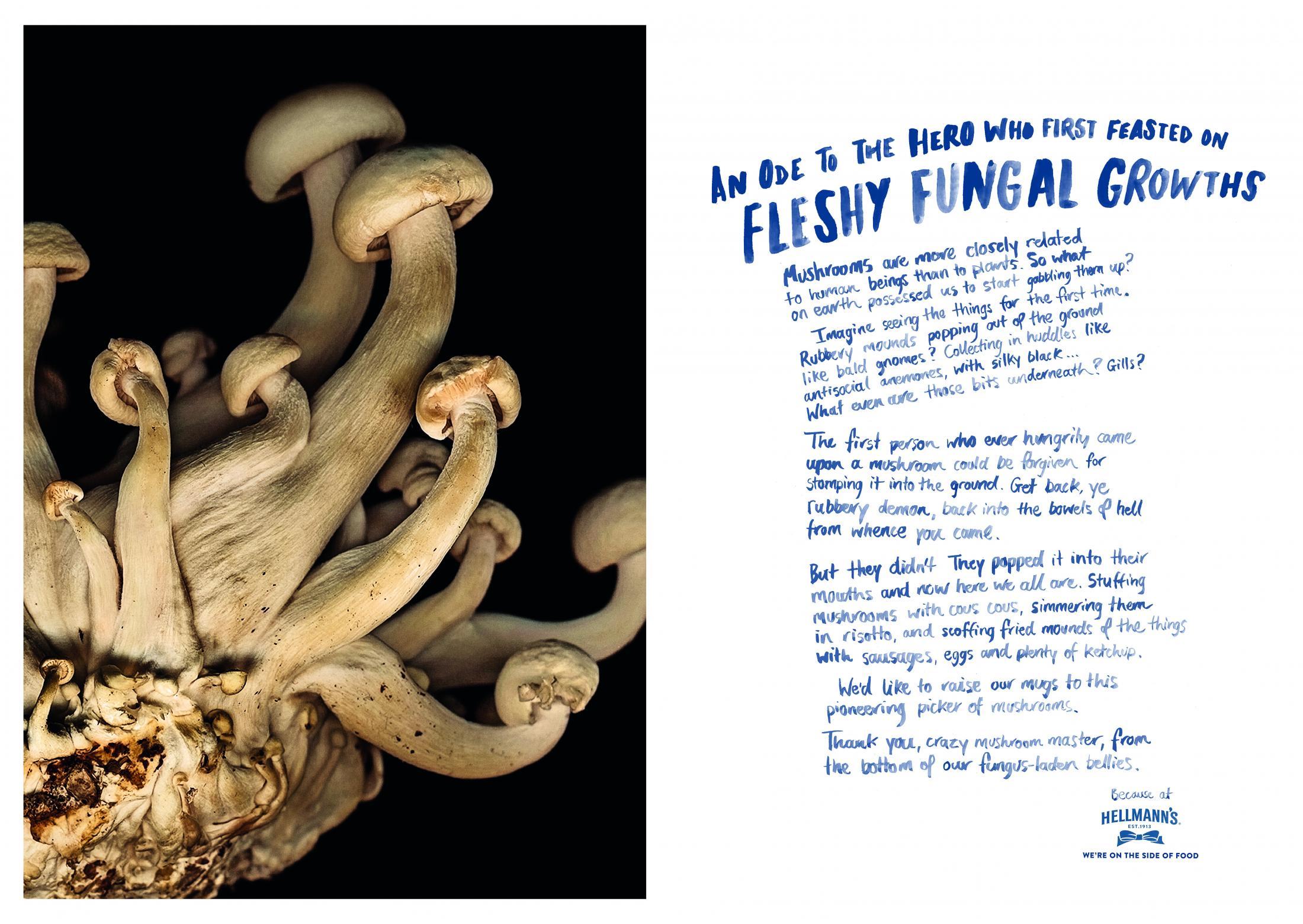 Hellmann's – Fleshy Fungal Growths.jpg