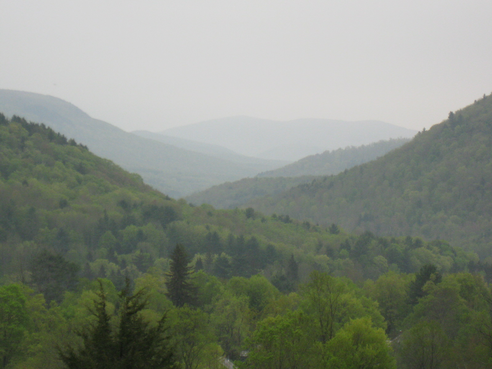 View of the Upper Poultney Watershed.
