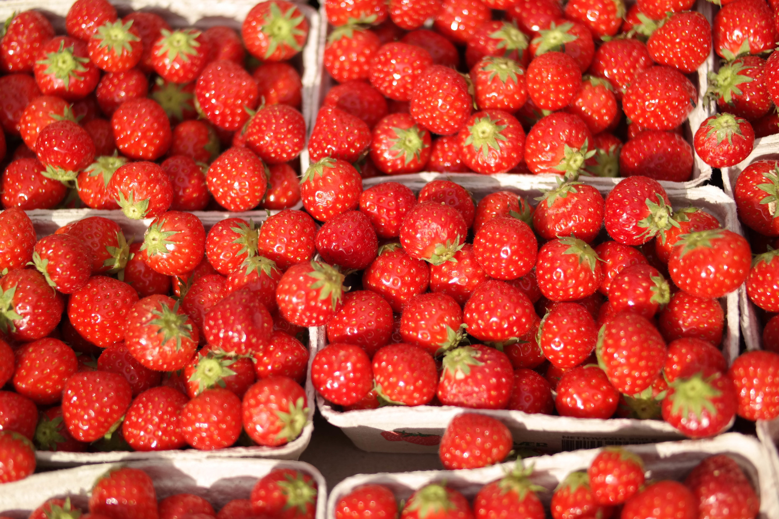 3-Delicious-Strawberry-Maple-Scone | www.8thandlake.com