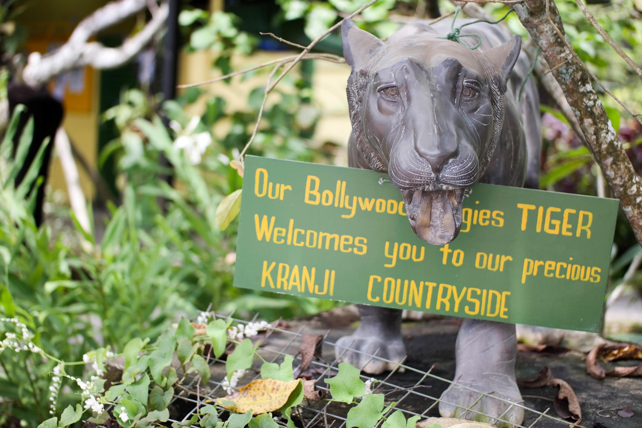 Bollywood Organic Farm