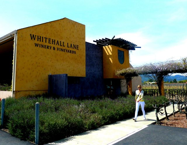 Our favourite winery - Whitehall