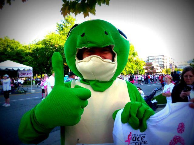 Gecko says Go!