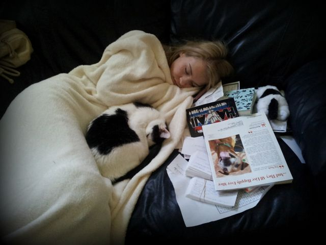 Homework gets too much for Naidee - what you might call a cat nap!