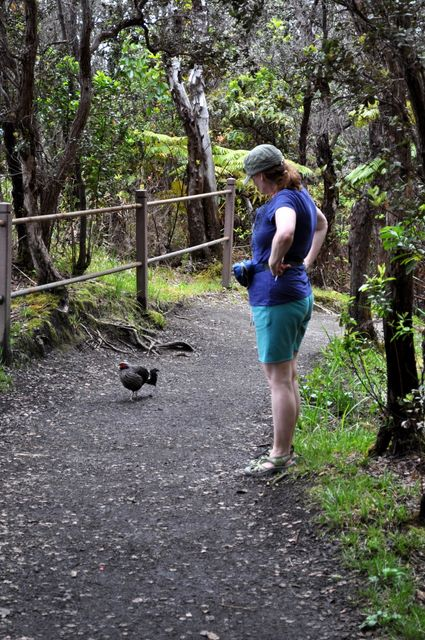 On the hike back up, Elaine discovers more wildlife but is persuaded it doesn't need rescuing