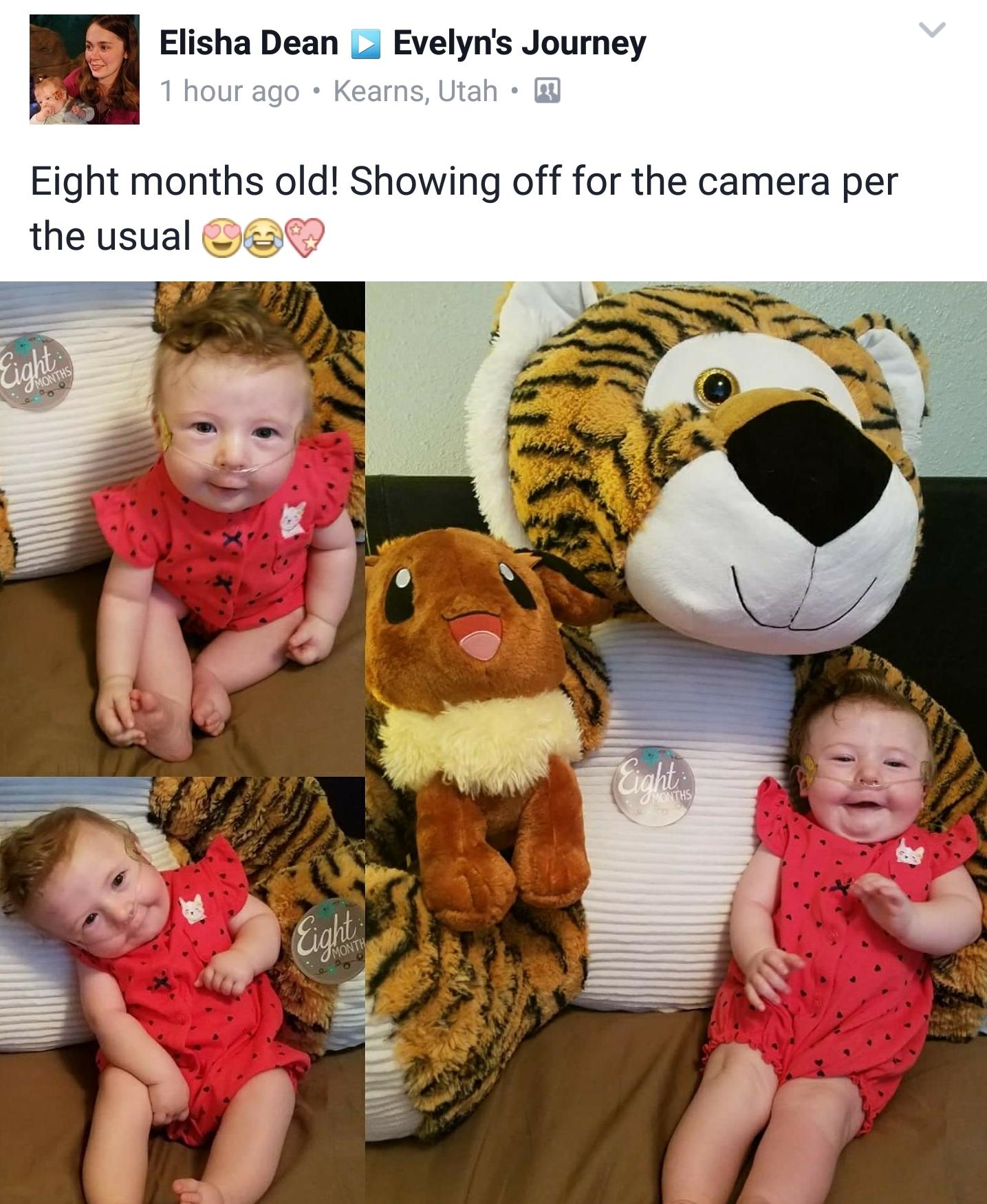 Eevee celebrates 8 months!