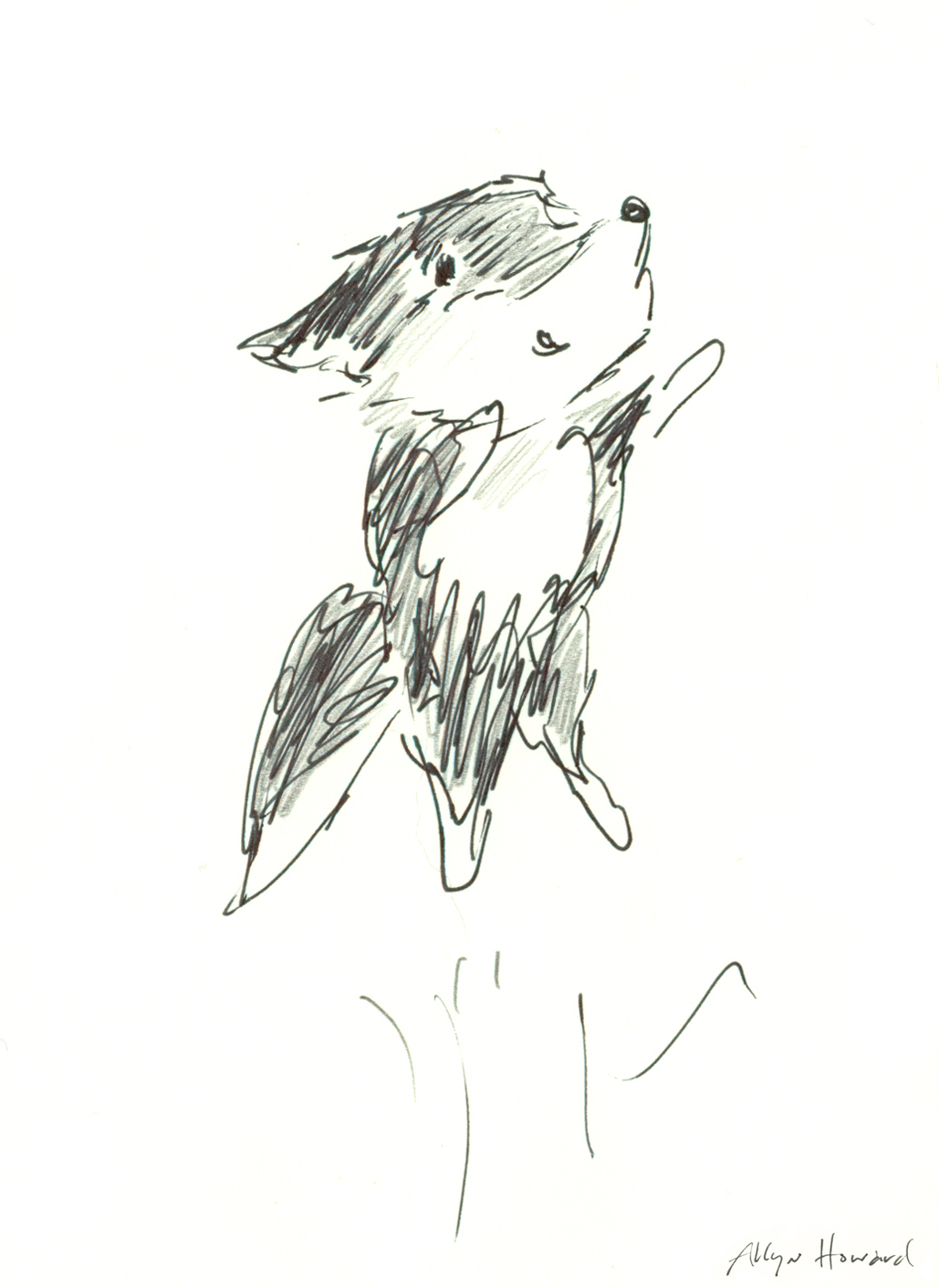 Fox Leaps_AllynHoward.jpg
