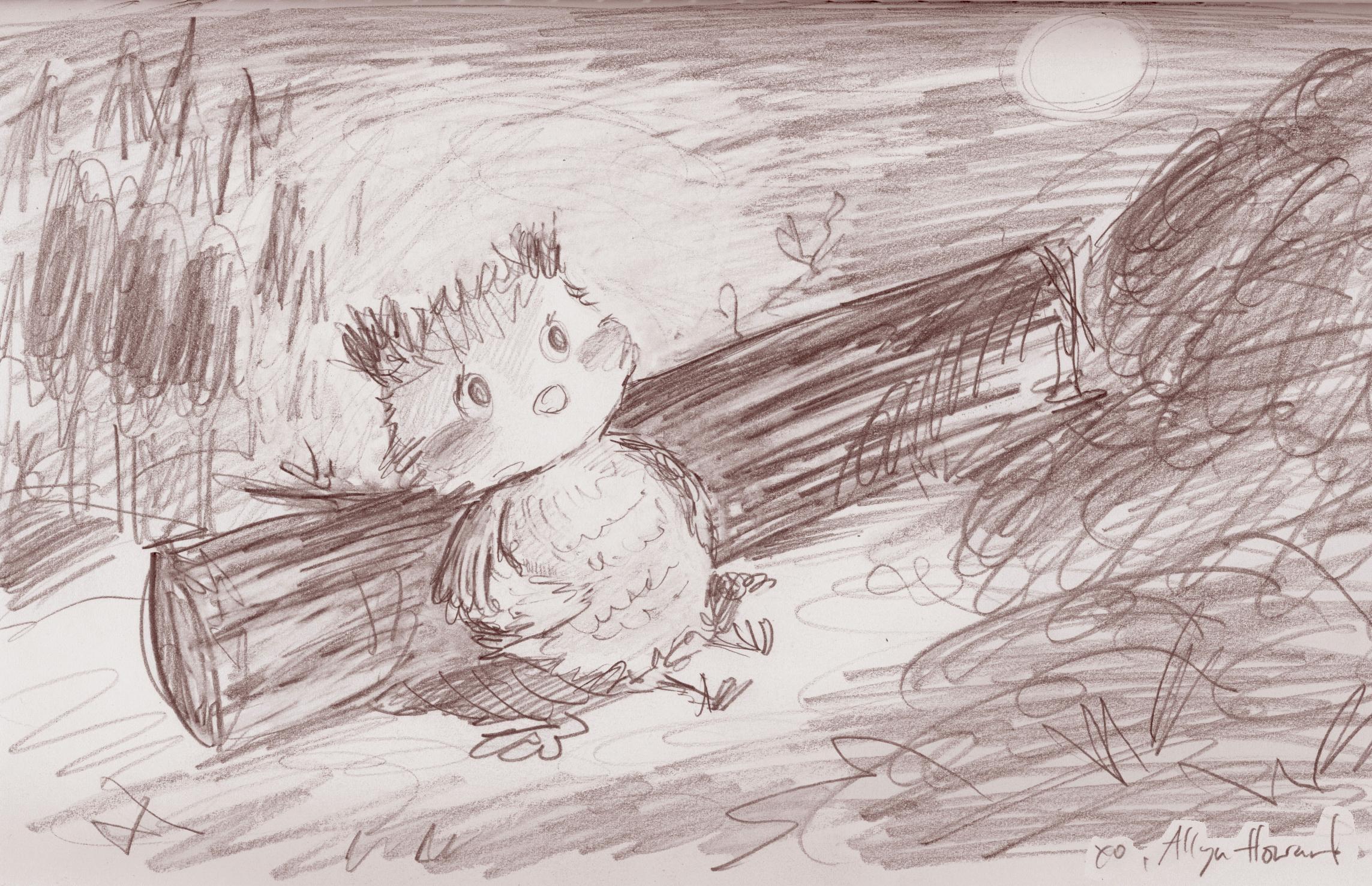1 owl rests_Allyn_Howard.jpg
