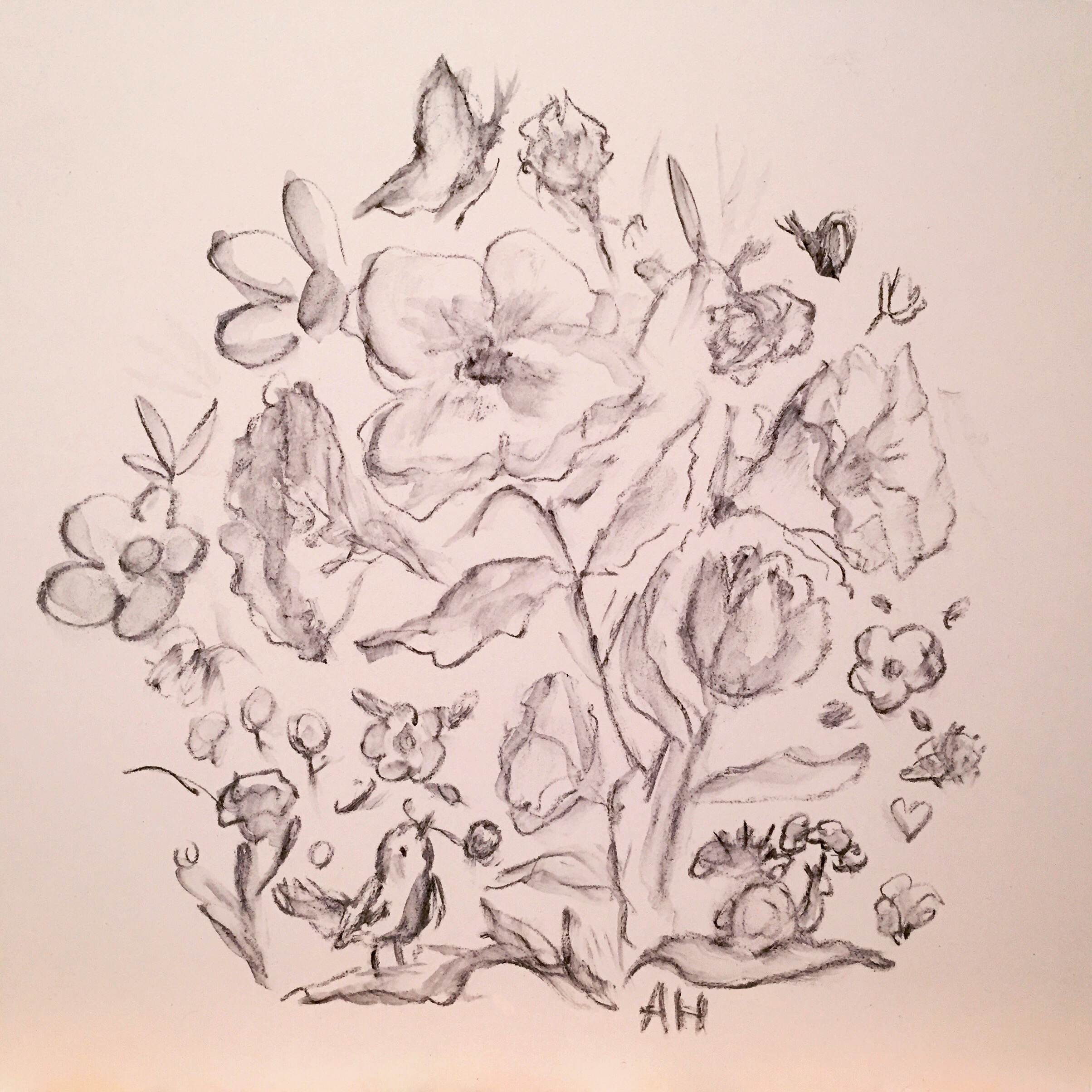 Allyn_Howard_floral-bird_initial-drawing.jpg