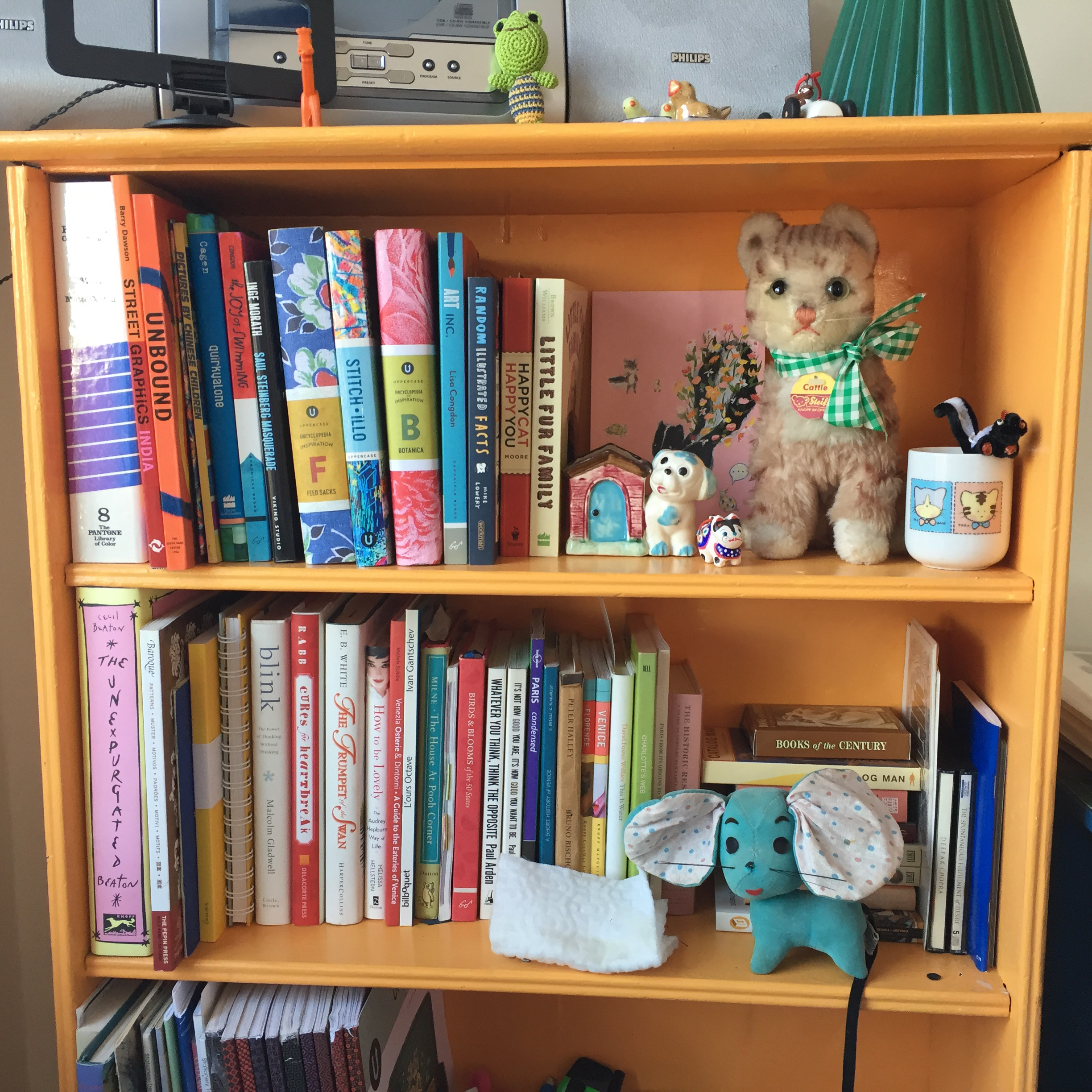 Allyn_H_orge shelves.jpg