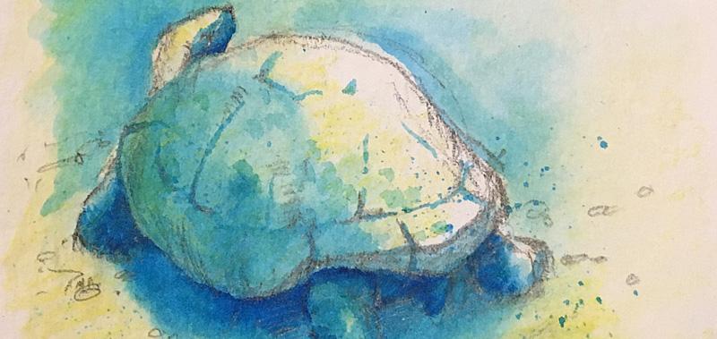 Tortiose-art-blog-1.jpg