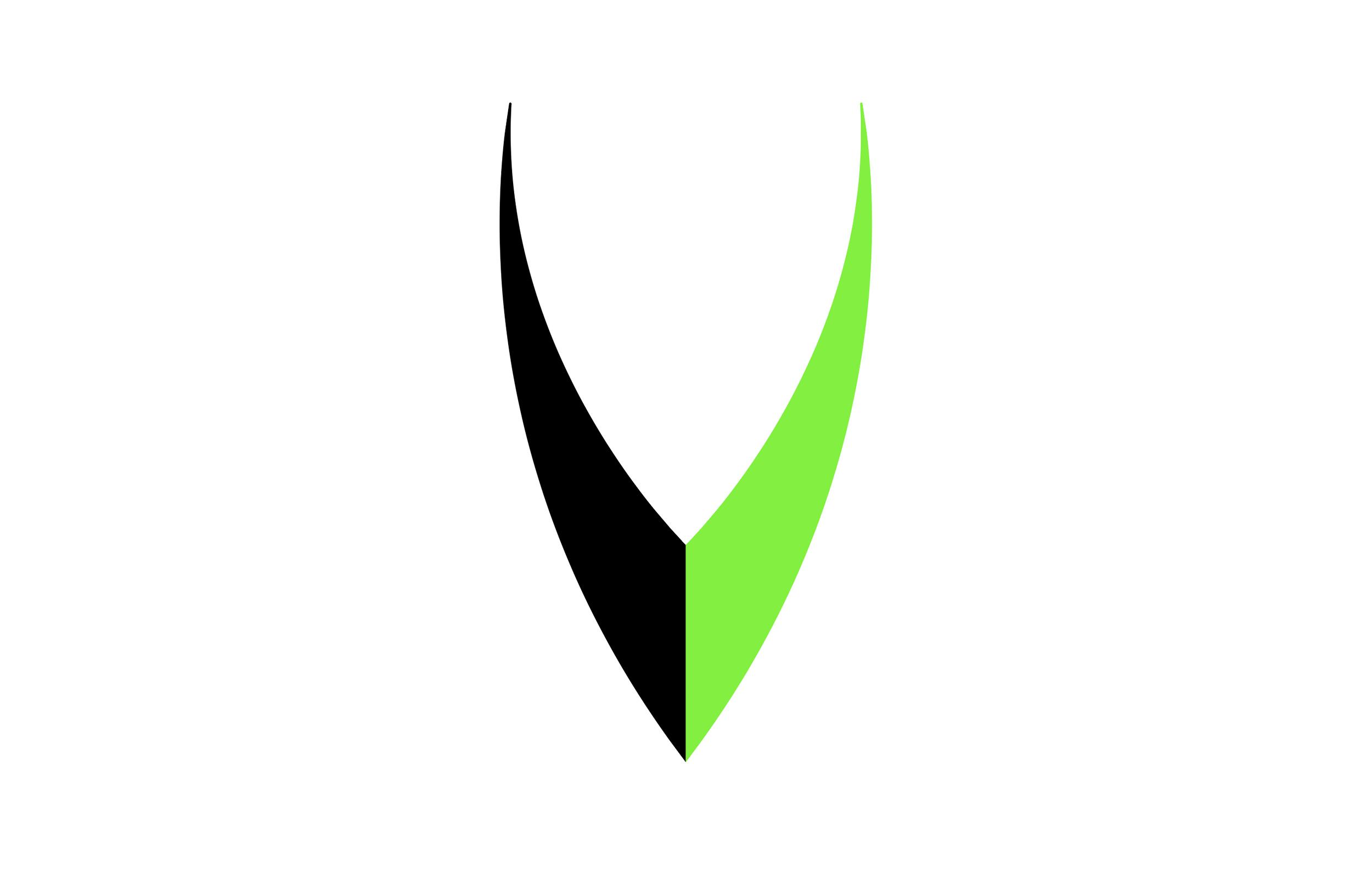 VV_Portfolio-3.jpg