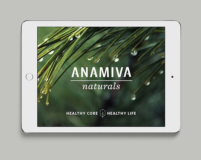 "Anamiva means ""free from disease"" in Sanskrit // Naming, identity and soon to be packaging for a natural supplement brand.  #branding #packagingdesign #logotype #naturalproducts #agencylife #seattledesign"