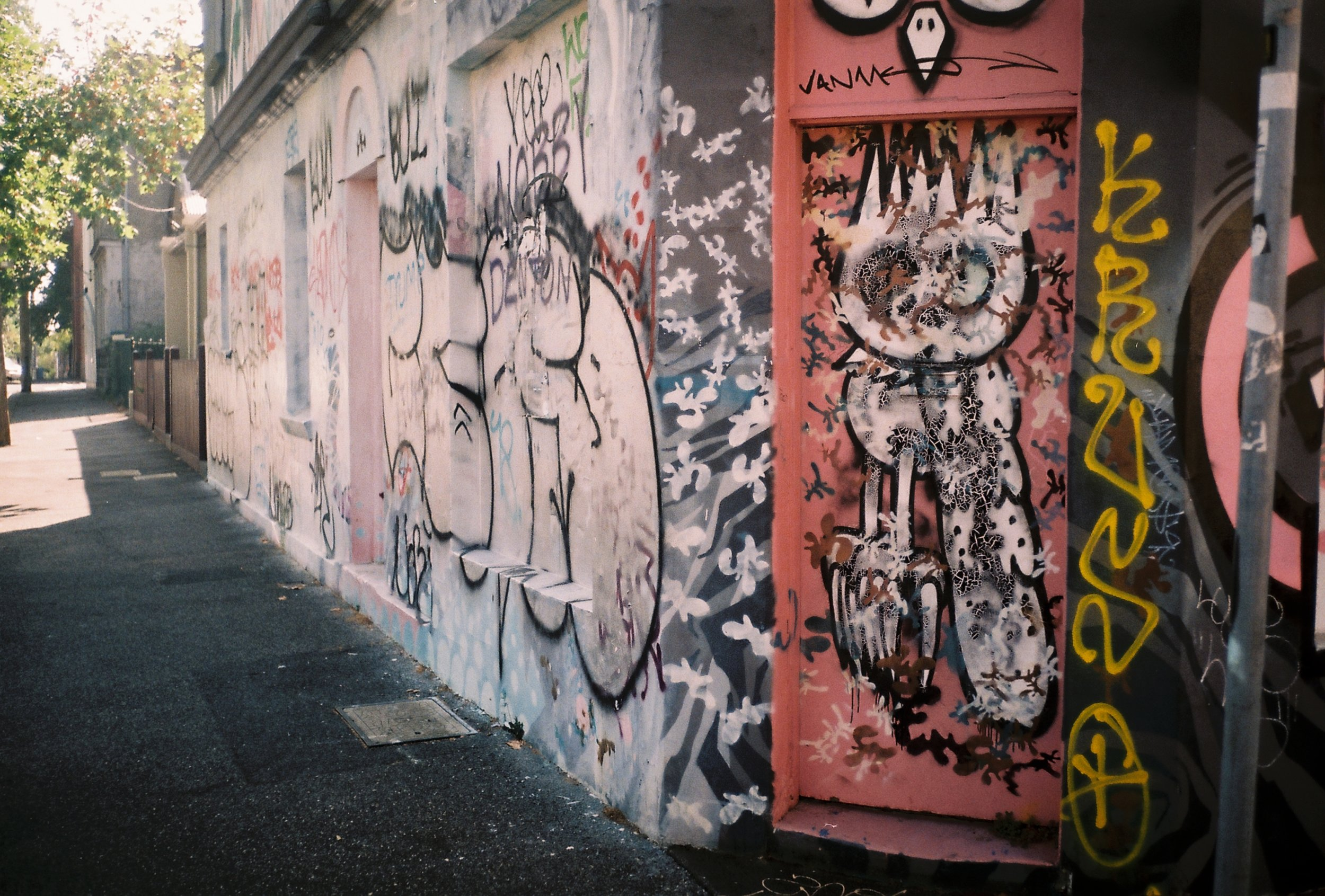 2B PAIR (side by side) Fitzroy I.JPG