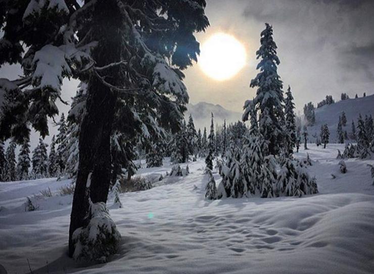 Touring around Mount Baker Ski Area on my birthday. November, 15, 2015.
