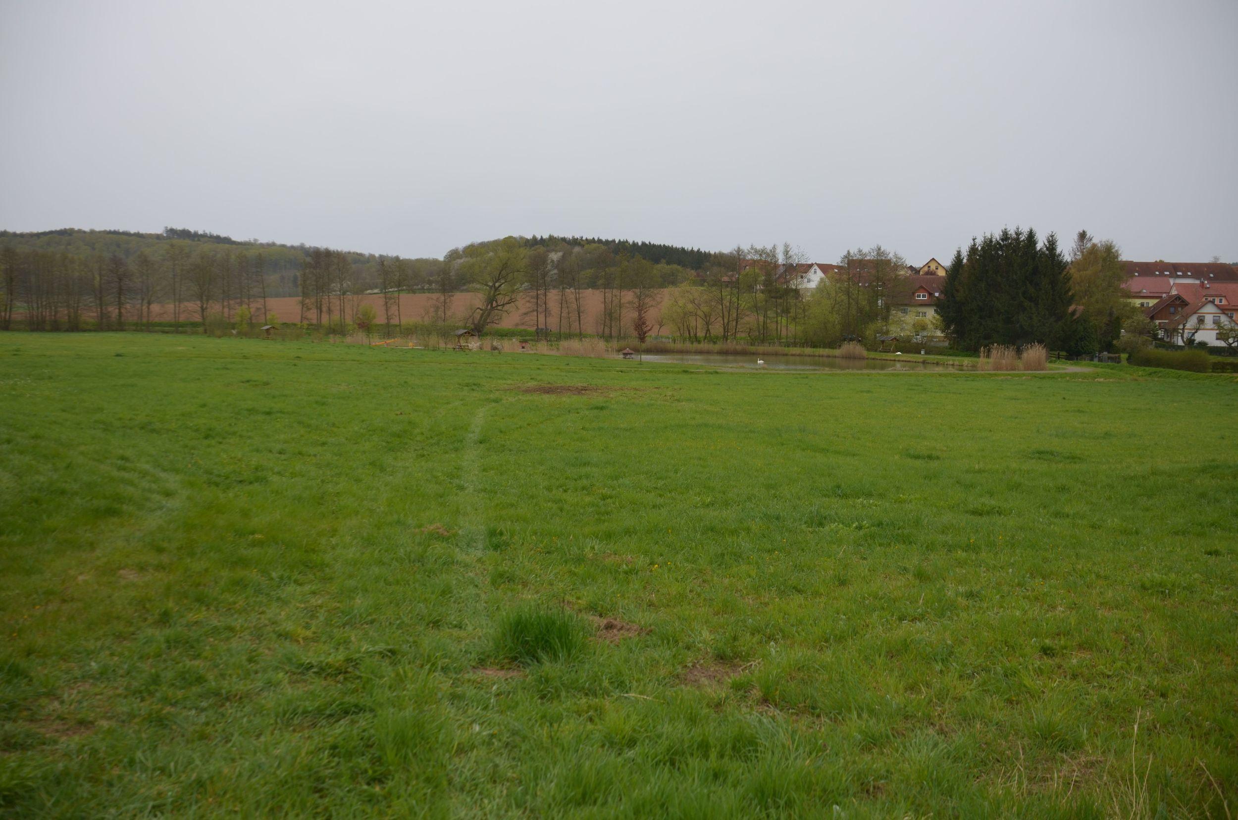 Bolin crash site