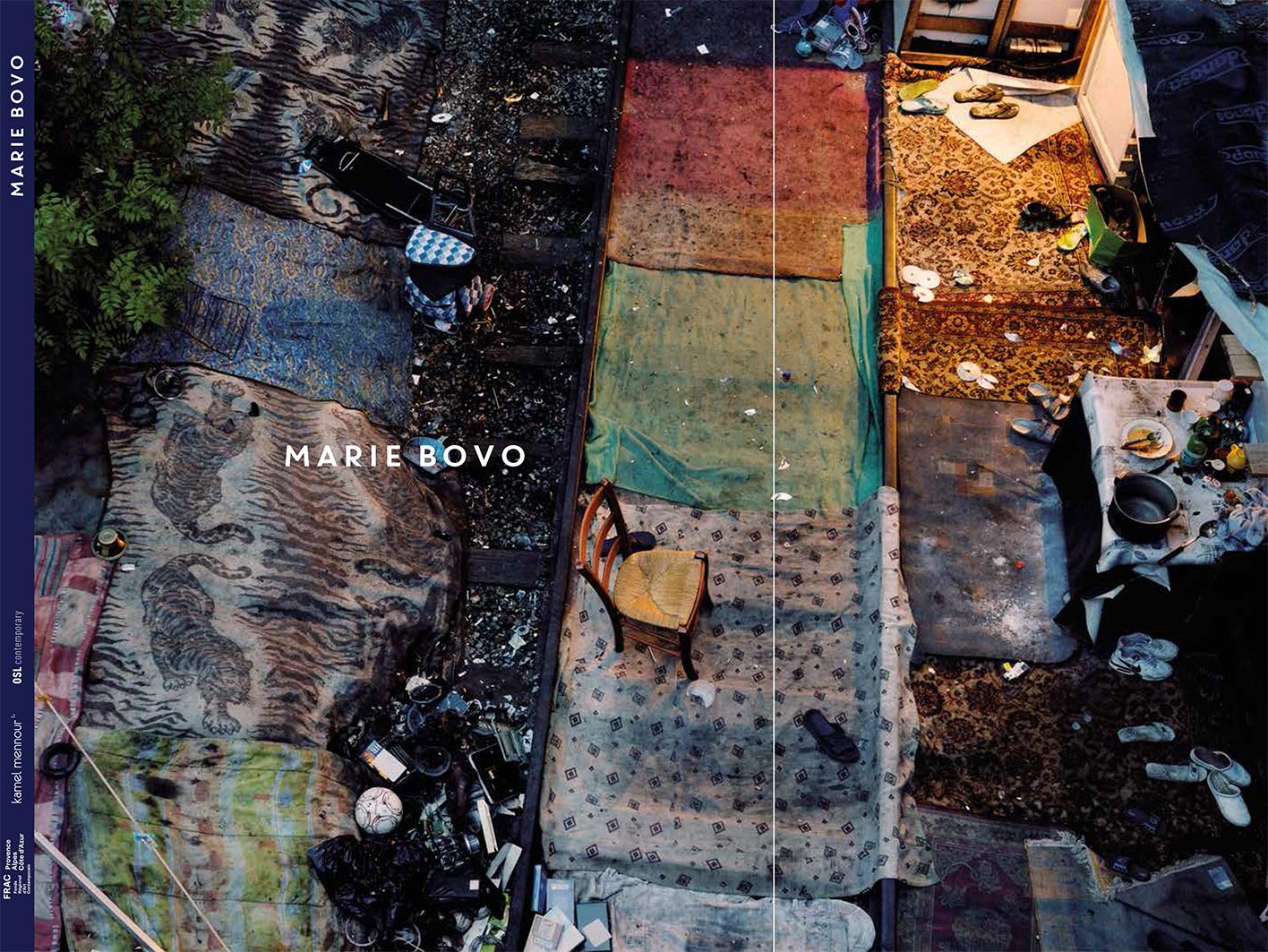 Bovo book cover web.jpg