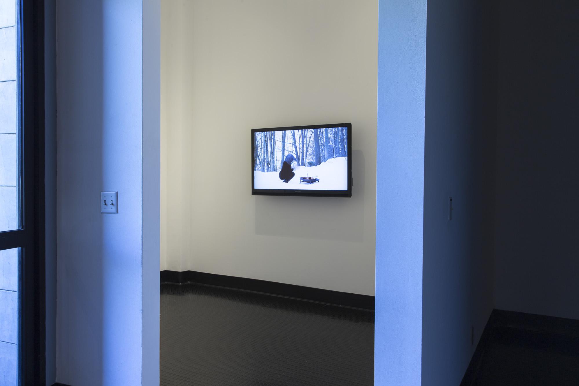 FLASH! contemporary art series