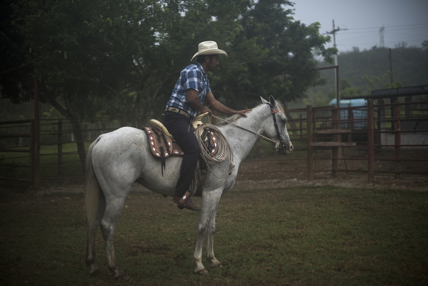 A farmer breaks a new horse on his farm on May 27, 2016 outside of Poza Rica, Veracruz.  The state's former governor, Javier Duarte, resigned his post in October 2016 and promptly disappeared after multiple corruption charges were leveled against him. He is widely believed to have strong links to Los Zetas.
