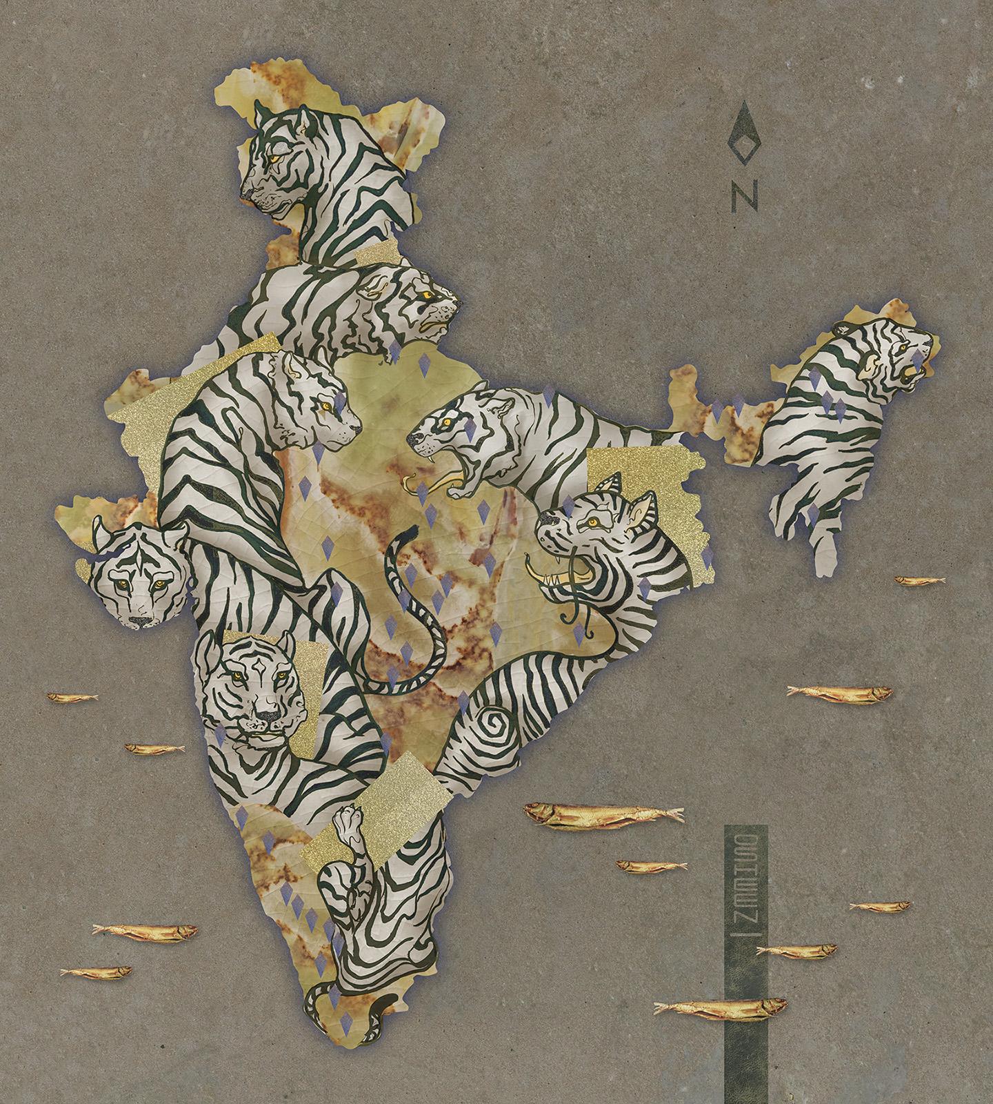 1973 Project Tiger x.jpg