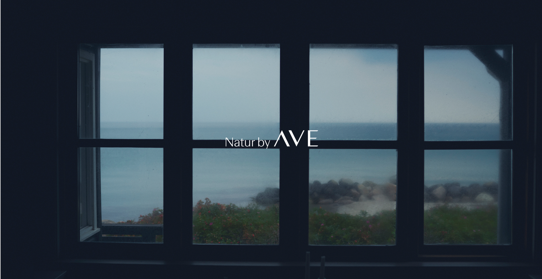 ave_header_named3.jpg