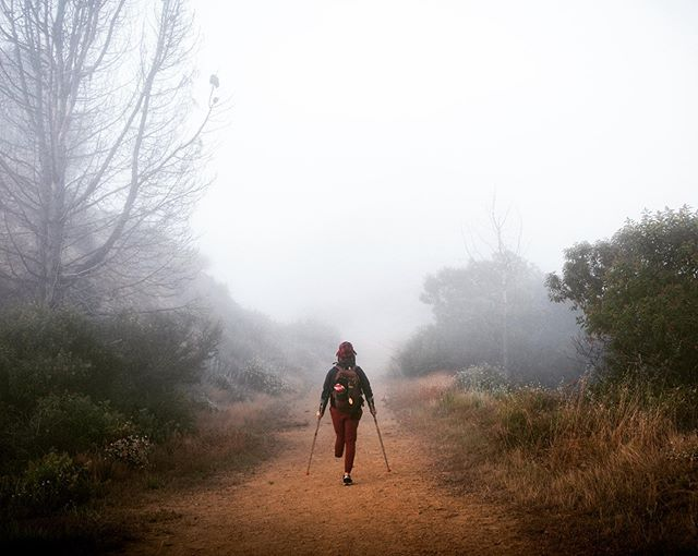 """Into the Myst"" shot by @iamchasespenser during our Top of the World hike early Sunday morning. #portrait"