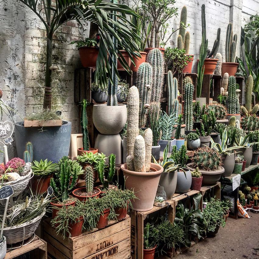 Flower Warehouse, Hackney