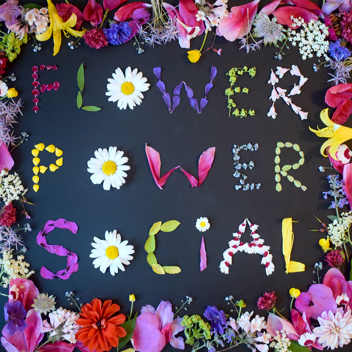 SAT 30TH JUNE -  FLOWER POWER SOCIAL  - YORK