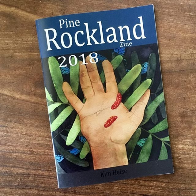 Second edition! Like the first,  PRZ is my for-charity contribution to pine rocklands conservation with all profits to charity! This edition has brighter color images and a new cover, it's available online (link in bio) and at the Miami Zine Fair this weekend (hope to see you there!) #miamizinefair @exilebooks  It contains 48 color pages of my Pine Rockland art from last year, plus the work of other contributing Florida artists, and all about the globally imperiled Pine Rocklands habitat of Florida, Cuba and the Bahamas. This is has been one of the projects I am most proud of, and am looking forward to bringing it back to the MZF in this format!!!❤️🌵🐢🌱