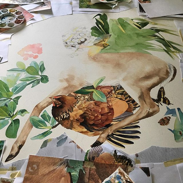 Progress so far on this Key Deer! It's a massive (for me) 4x4 foot painting that I've been working on for a few weeks :) Key Deer are a diminutive species of white tailed deer, no bigger than a large dog, and endangered mostly to Big Pine Key. I'm going to put some plants and animals that are also native to the keys (the chicken is not native, but it is famously naturalized at least on Key West).