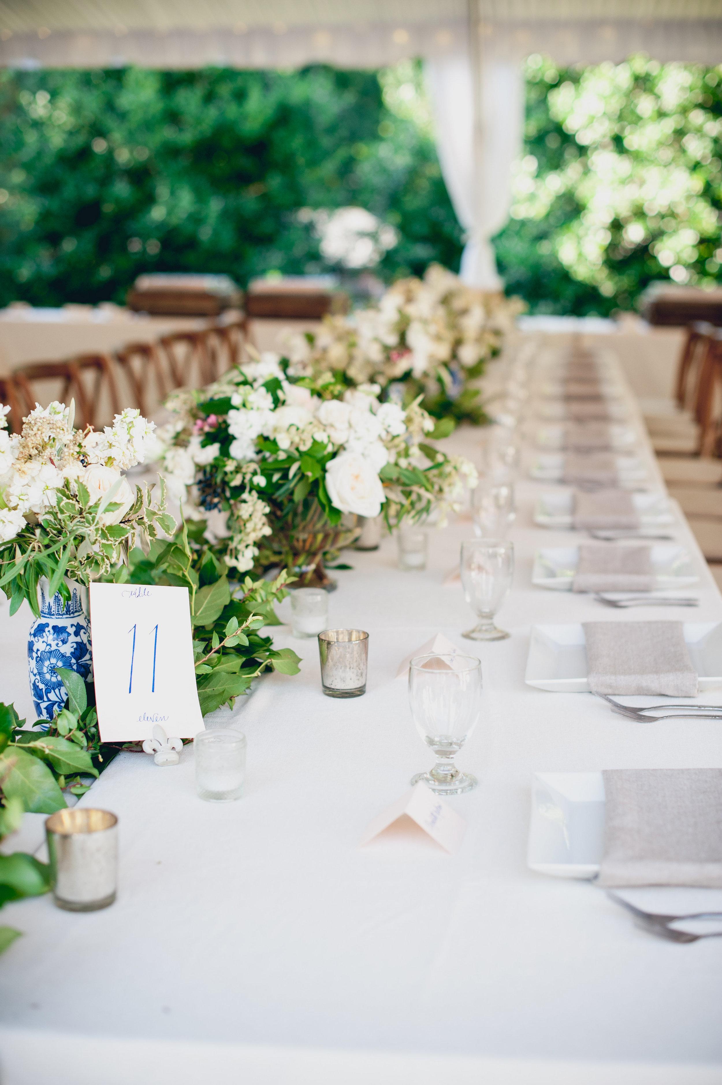 Wiedemann Wedding Photos-Reception-0012.jpg
