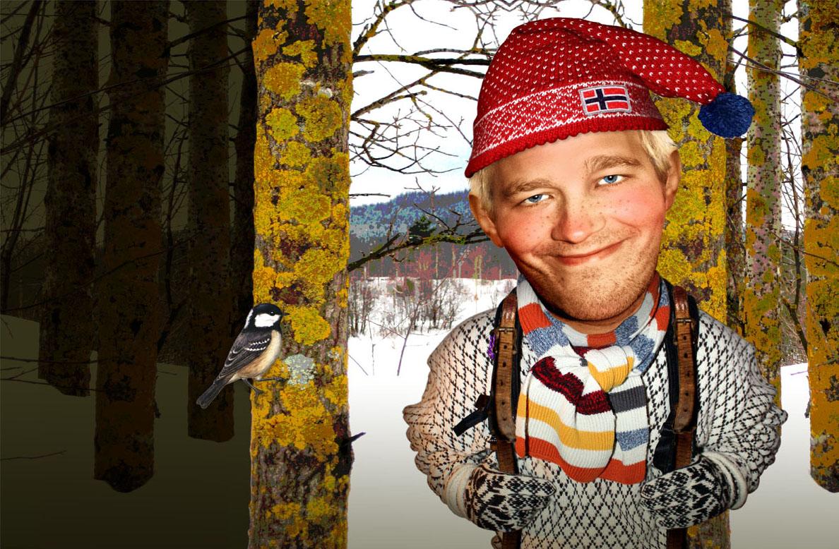 Made in Norway, bokprosjekt