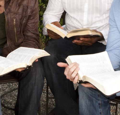 men-study-bible-500.jpg