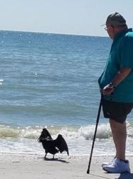 Tom on beach 2_14_18 croped.jpg