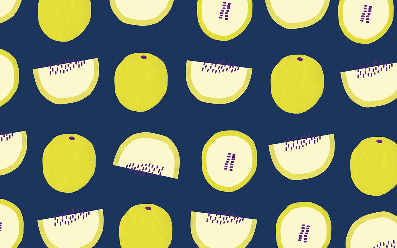 Melon_Header_Web.jpg