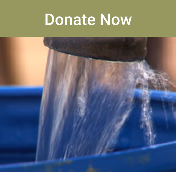 Home-Donate-Now.jpg
